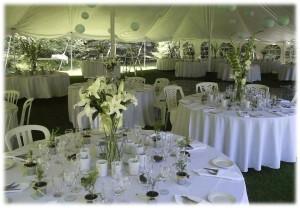 Webvivah Blog – Personal Wedding