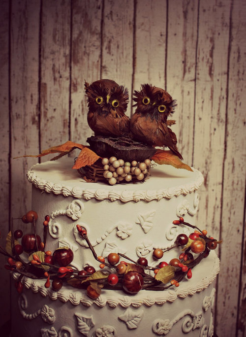 The owl are getting married soon.