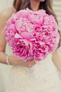 big, fluffy pink peonies are bouquet gold